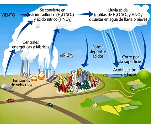 Ciclo del azufre blog de biolog a for Que elementos conforman el suelo